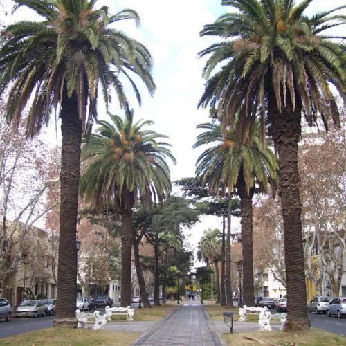 Bulevar Oroño