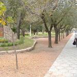 Plaza San Martín  - Capilla del Monte
