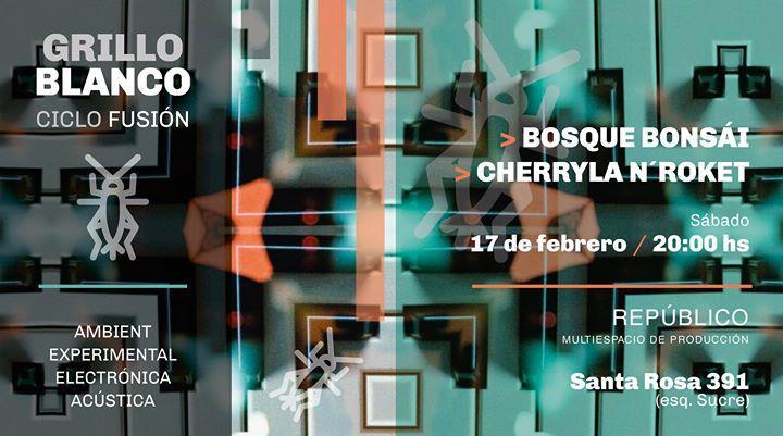 Grillo Blanco - Ciclo fusión de música - 1era. Mutación