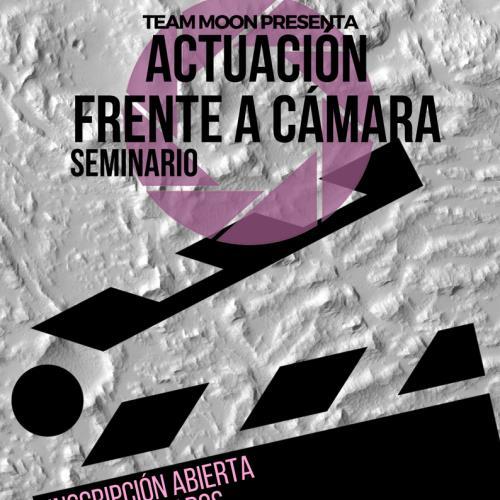 Seminario ACTUACION FRENTE A CAMARA
