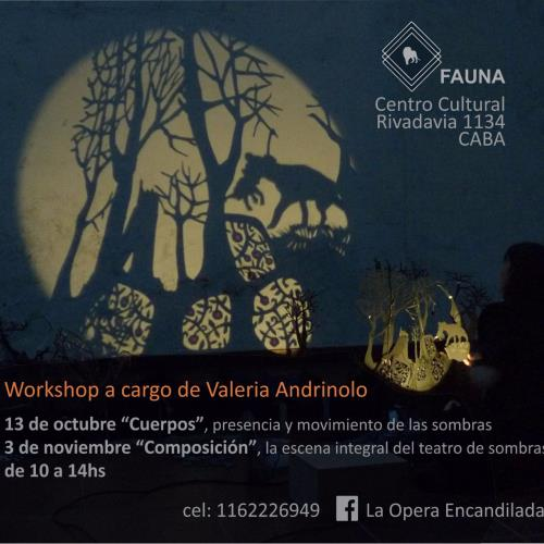 Teatro de sombras workshops + funciones