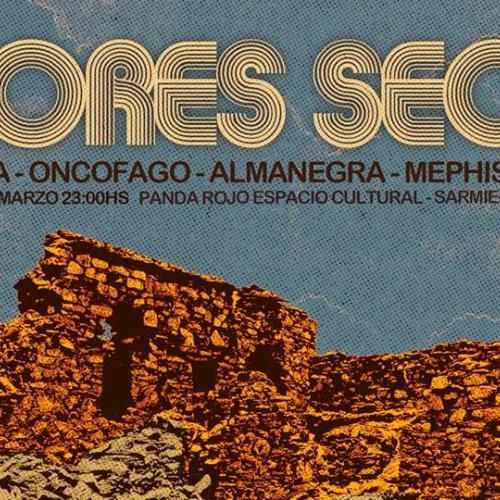 16/3 - CICLO FLORES SECAS - 16/3