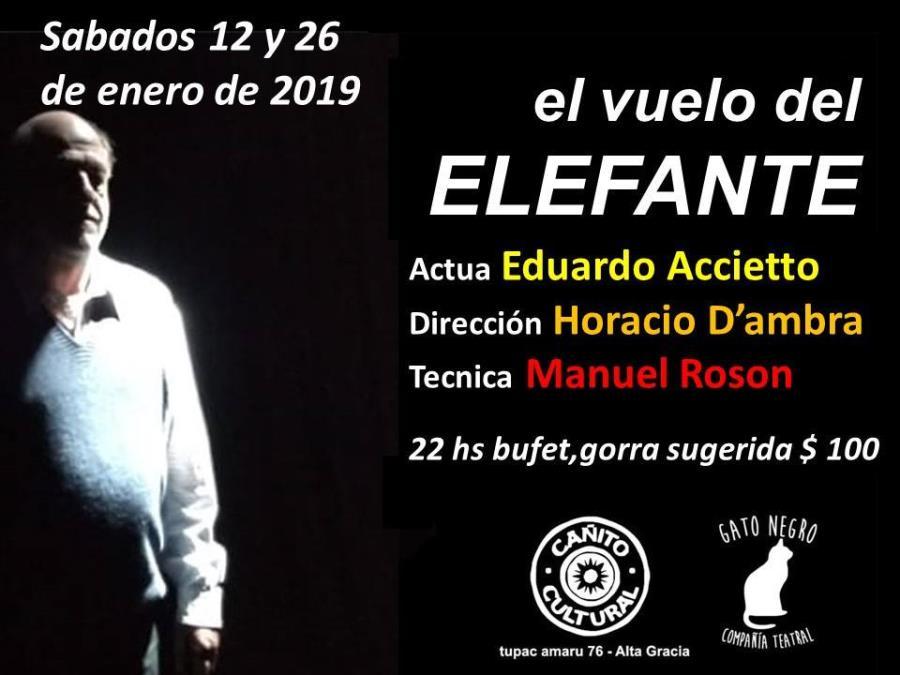 El vuelo del elefante (Teatro)