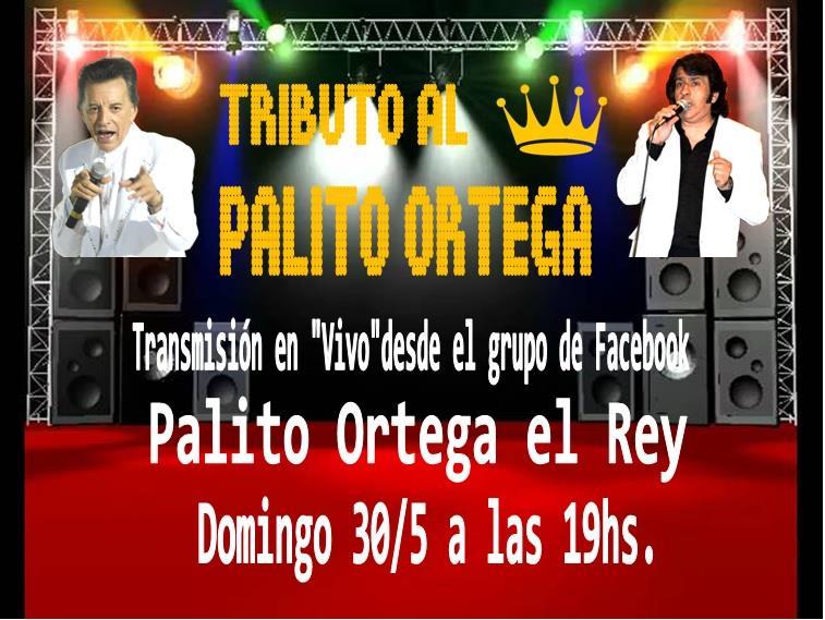 Tributo Al Rey Palito Ortega