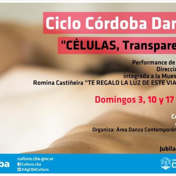Ciclo Córdoba Danza 2016 - Células. Transparenta la piel. Ensayo sobre la forma