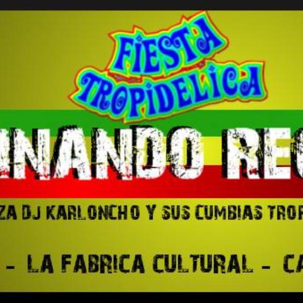 Fiesta Tropidélica 2014: Germinando y Dj karloncho