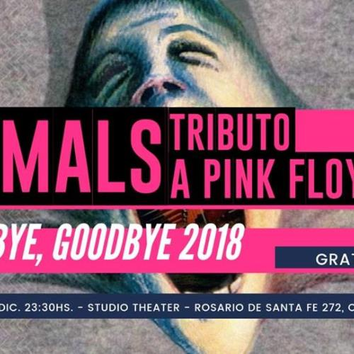 Animals Tributo a Pink Floyd Gratis en Studio Theater 28/12/18