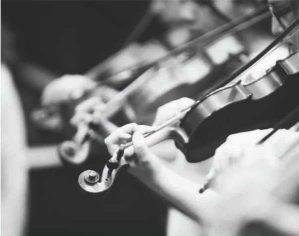 Música en el Real: Concierto de cierre académico de la Orquesta Suzuki