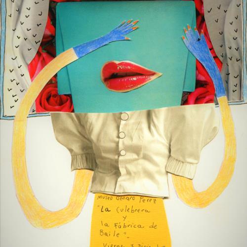 Encuentro de bordado y cumbia - Rosa Mercedes González
