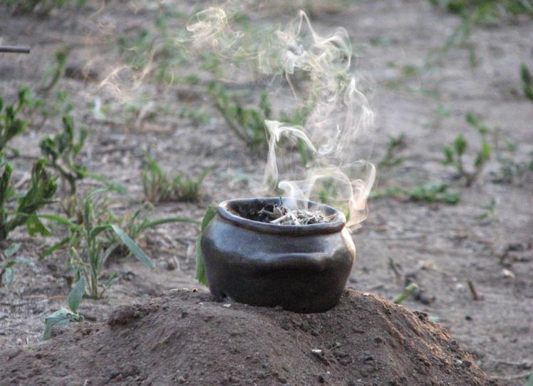 Ceremonia ancestral del Algarrobo